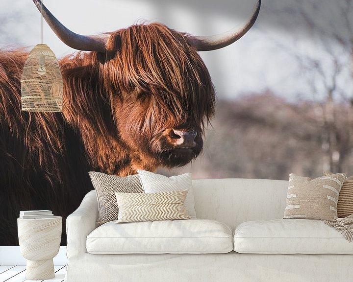 Sfeerimpressie behang: Portret van een Schotse Hooglander van Milou Schothuis