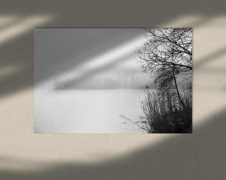 Impression: La forêt de Haarlemmermeer sur Wim Slootweg