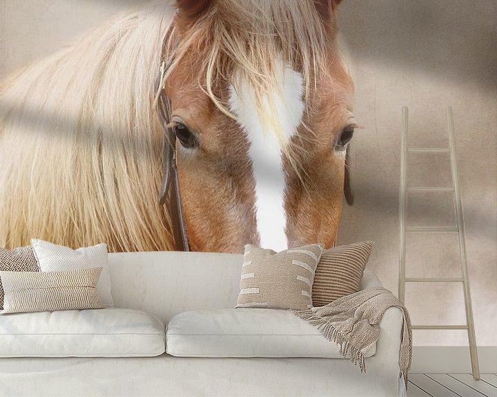Beispiel fototapete: Pferde von Heiko Lehmann