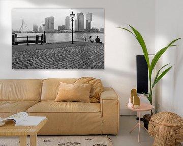 Dreaming of Rotterdam