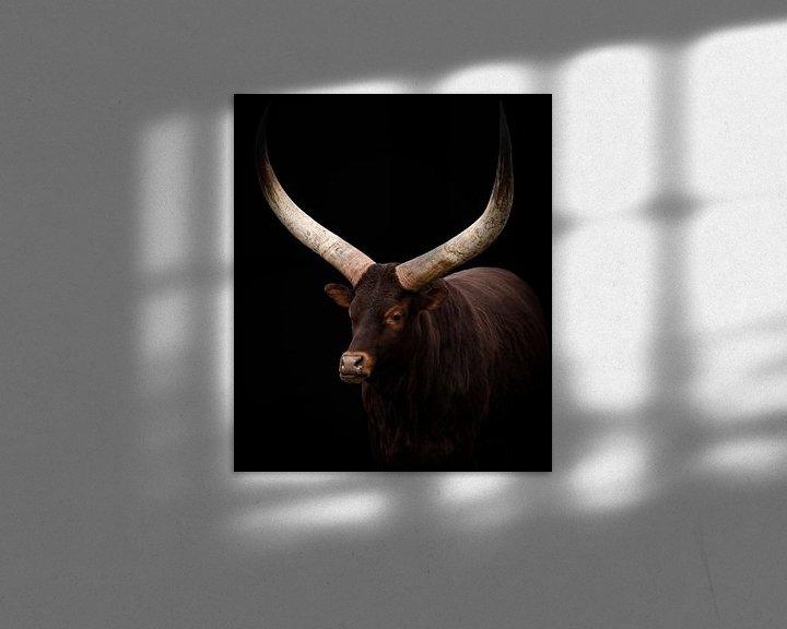 Impression: Portrait du bœuf de Watusi sur Marjolein van Middelkoop
