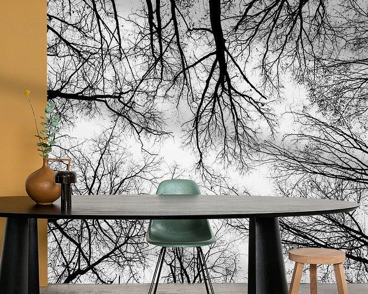 Beispiel fototapete: Blick in die Baumkronen von Fartifos