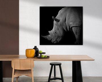 Neushoorn portret in zwart-wit von Marjolein van Middelkoop