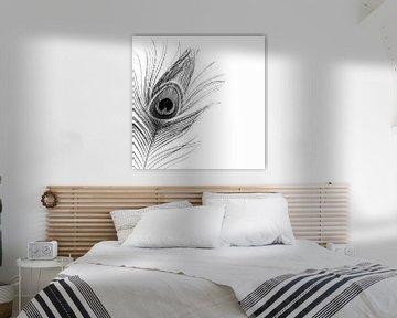 Pauwenveer zwart-wit von Part of the vision