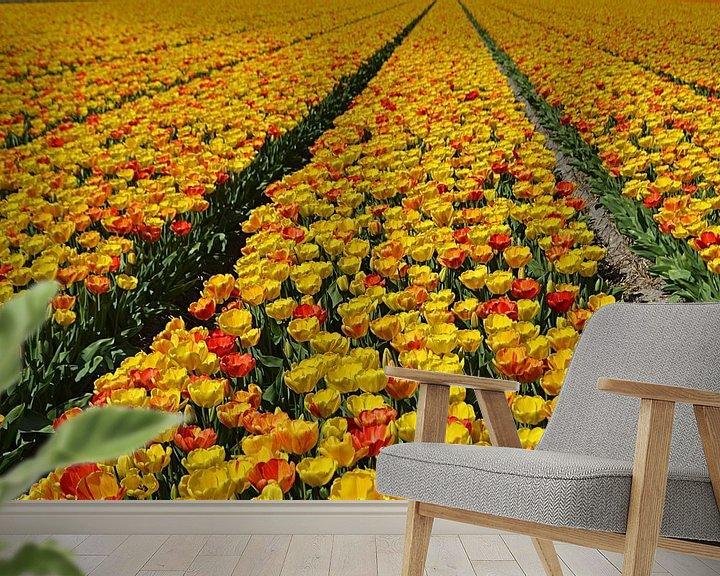 Impression: Tulpen in de Bollenstreek sur JTravel