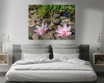 Balancesteine und Blumen Wellness Hintergrund van Animaflora PicsStock