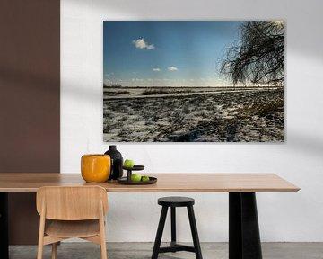 Een winters uitzicht over het Sneekermeer van Pim van der Horst