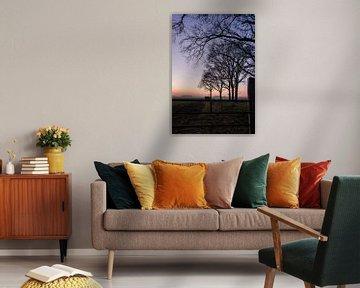 Kleurrijke zonsondergang van Manon Zandt