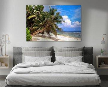 Op het tropische strand van de Seychellen in de zomer