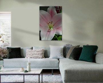 Schöne Blume von Ellen Voorn