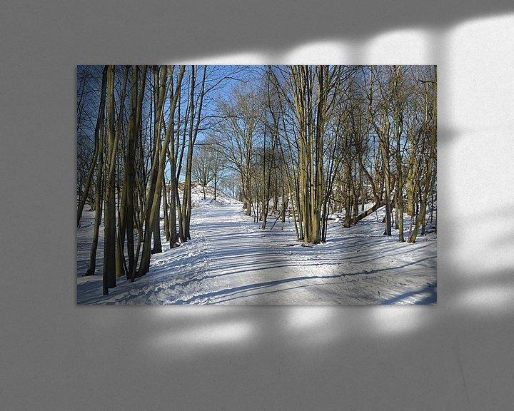 Sfeerimpressie: Sneeuwlandschap in de Amsterdamse Waterleidingduinen van JTravel