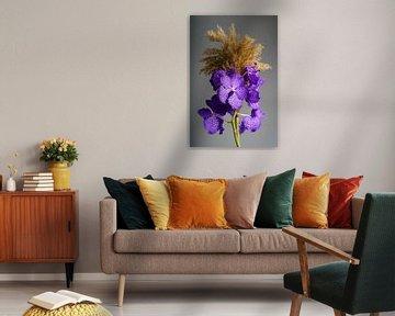 Orchidee met paarse kleur van Björn van den Berg
