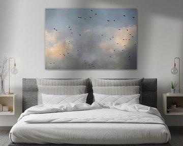 Vögel im Abendlicht von Studio Maria
