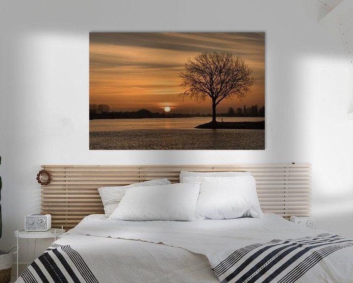 Impression: Lever du soleil sur un arbre sur Moetwil en van Dijk - Fotografie