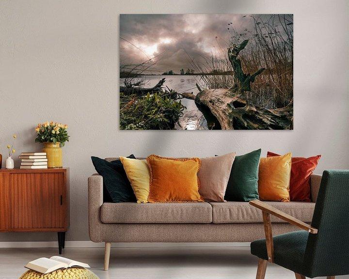 Impression: Tronc d'arbre dans une rivière sur Bert-Jan de Wagenaar