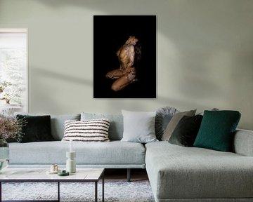 Bildende Kunst - Porträt Vergänglichkeit - Feuer von Joost van Lieshout