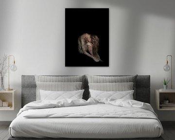 Bildende Kunst - Porträt Vergänglichkeit - Wasser von Joost van Lieshout