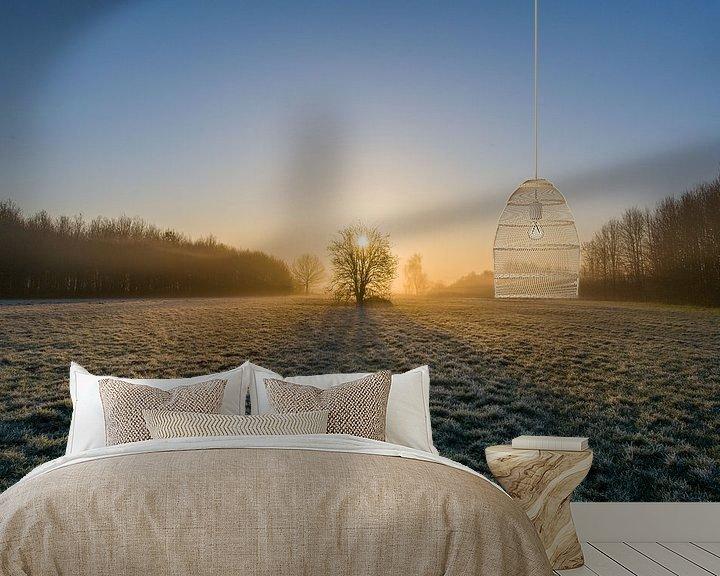 Sfeerimpressie behang: Een magische ochtend in het bos van Jim De Sitter