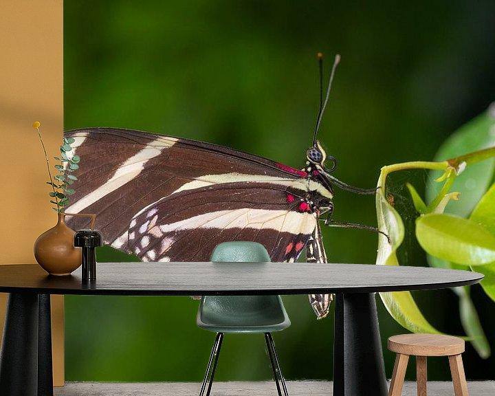 Sfeerimpressie behang: Close up vlinder op een blad van Ron Jobing