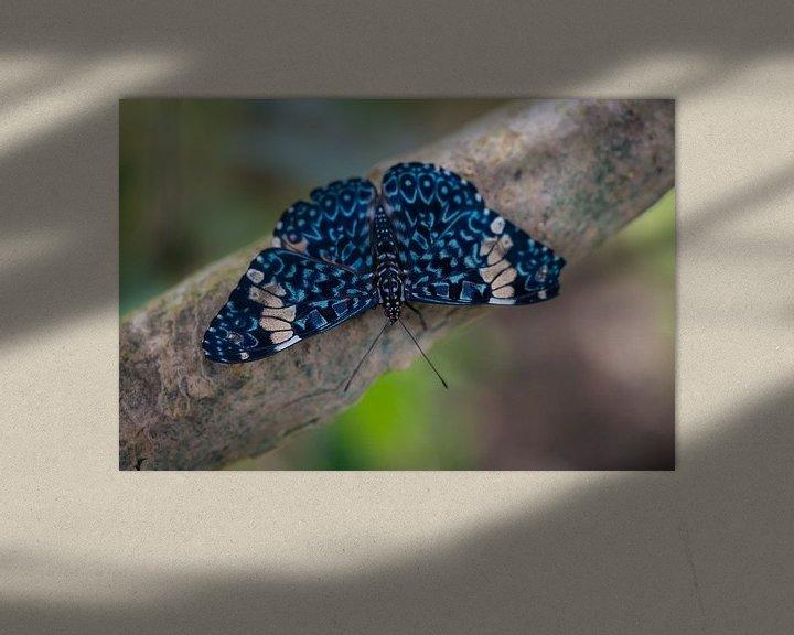 Sfeerimpressie: Close up vlinder op een tak van Ron Jobing