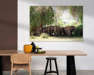 Kudde Olifanten beschermen hun kalfjes tegen de zon in Samburu NP., Kenia. van Louis en Astrid Drent Fotografie