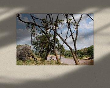 Tropisch beeld van een rivier en palmen, Kenia, Afrika van Louis en Astrid Drent Fotografie