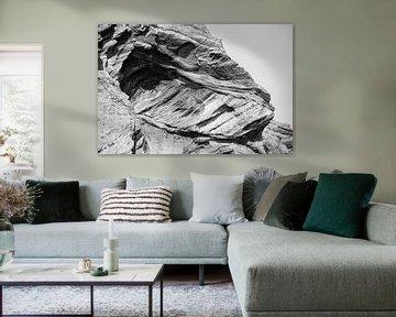 Dinosaurus kop in steen sur Stephan Van Reisen