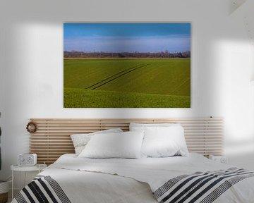zonnige ochtend over de heuvelachtige weilanden in Maastricht van Kim Willems