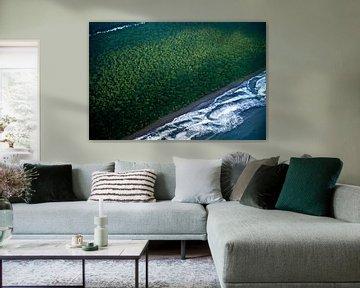 Regenwoud en zee van bovenaf. Costa Rica van Catalina Morales Gonzalez