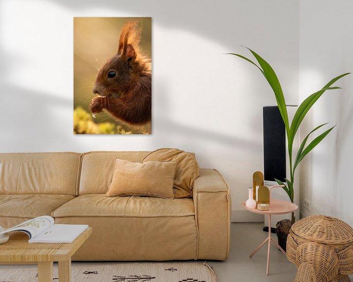 Beispiel: Eichhörnchen von Marjan Slaats