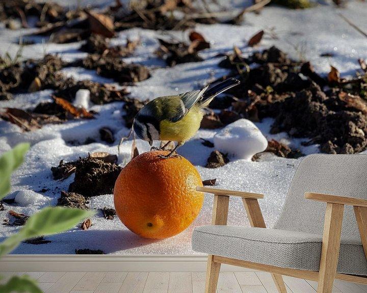 Impression: Mésange bleue avec orange sur Anjo ten Kate