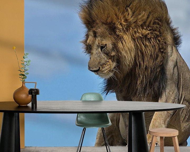 Beispiel fototapete: Männlicher Löwe auf den Ngongkopjes der Serengeti, Tansania. von Louis en Astrid Drent Fotografie