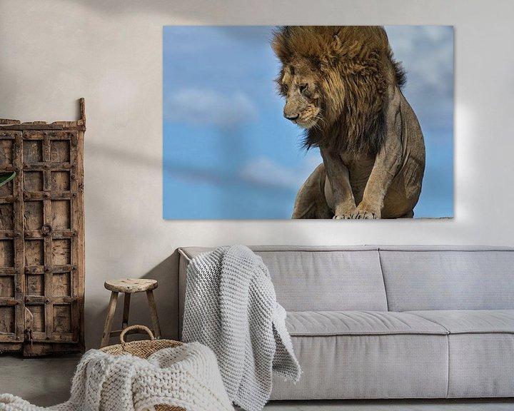 Beispiel: Männlicher Löwe auf den Ngongkopjes der Serengeti, Tansania. von Louis en Astrid Drent Fotografie