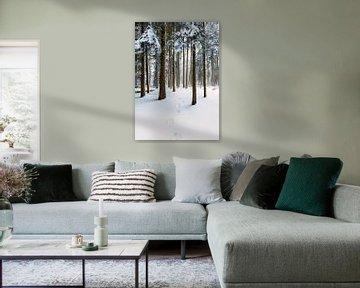 Voetstappen in de sneeuw, bos in Nederland van Sebastian Rollé - travel, nature & landscape photography
