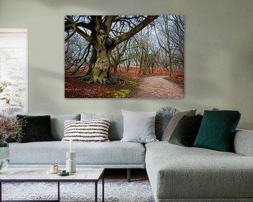 Bos landschap van Marcel van Balken