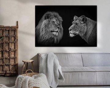 Löwenpaar in Schwarz und Weiß von Marjolein van Middelkoop