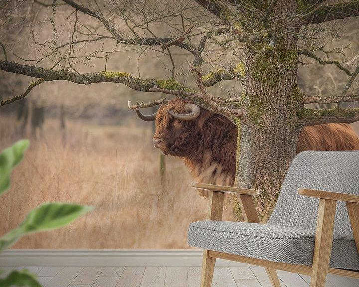Sfeerimpressie behang: Schotse Hooglander stier van Karin van Rooijen Fotografie
