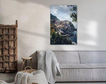 Uitkijkpunt op Manarola, Cinque Terre van Felix Van Lantschoot