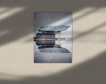 Reflecties bij het havenhuis van Antwerpen van Felix Van Lantschoot