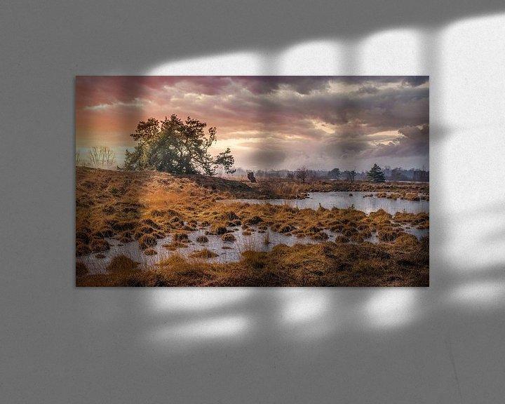 Sfeerimpressie: Dreigende onweerswolken op het Hageven van Peschen Photography