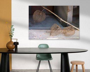 De schoonheid die overblijft van Paul Nieuwendijk