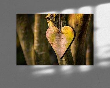 Houten hart in avondzon van Coby Bergsma