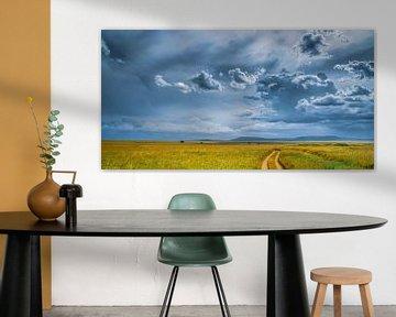Savanne Landschaft mit Wolken von Erwin Floor