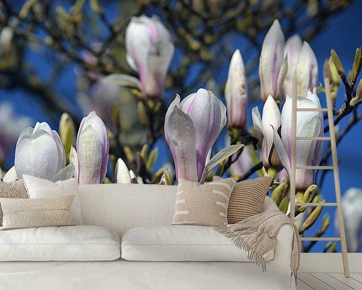 Sfeerimpressie behang: Bloeiende magnolia van JTravel