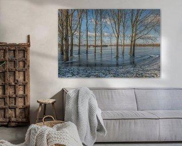 Frozen World van Moetwil en van Dijk - Fotografie