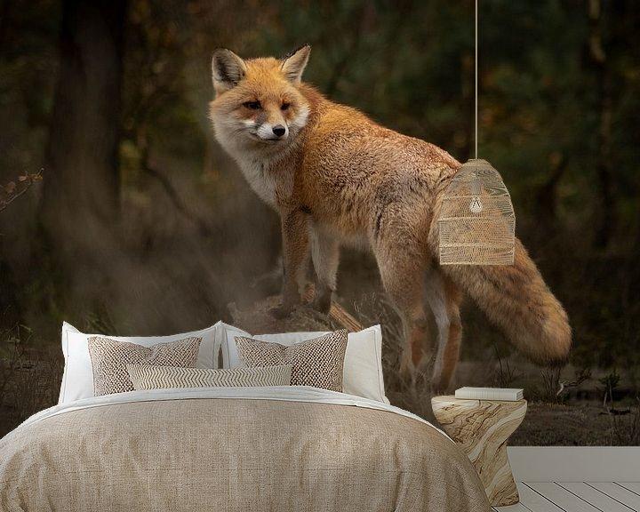 Beispiel fototapete: Fuchs im Wald (Veluwe) von Frans Roos