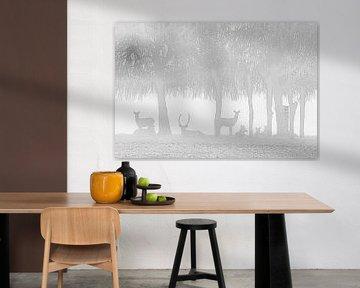 Herten in de mist van Karin Riethoven