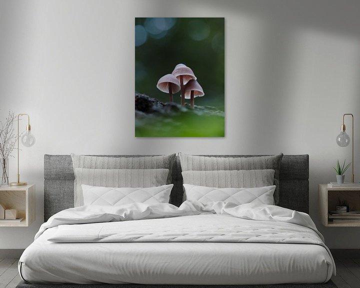 Impression: Des champignons dans une forêt sur Astrid Brouwers