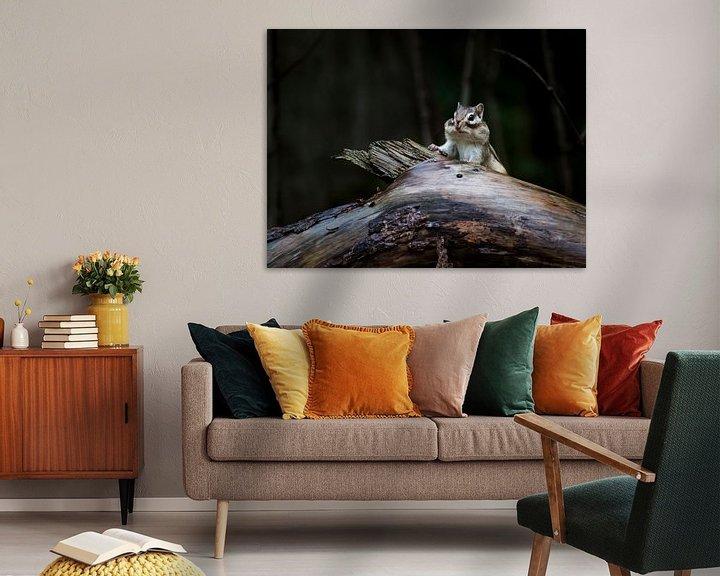 Beispiel: Sibirisches Erdhörnchen 1 von Femke Straten