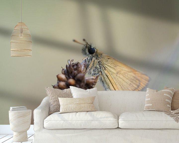Beispiel fototapete: Zwergkaulquappe von Astrid Brouwers